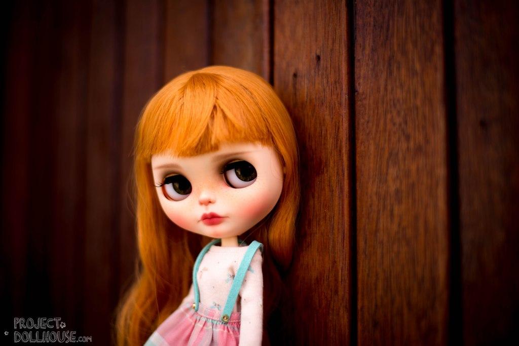 Meet Clover An Autumn Beauty Project Doll House